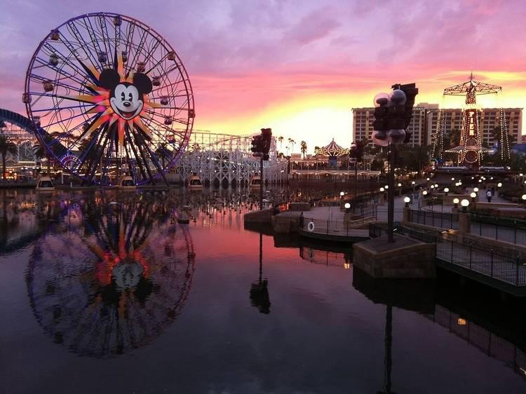 Take a trip to Disneyland