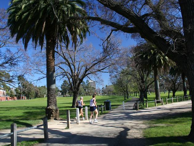 Two runners going for a jog through Princes Park in Carlton