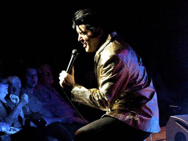 A Vision Of Elvis: Elvis Presley Tribute