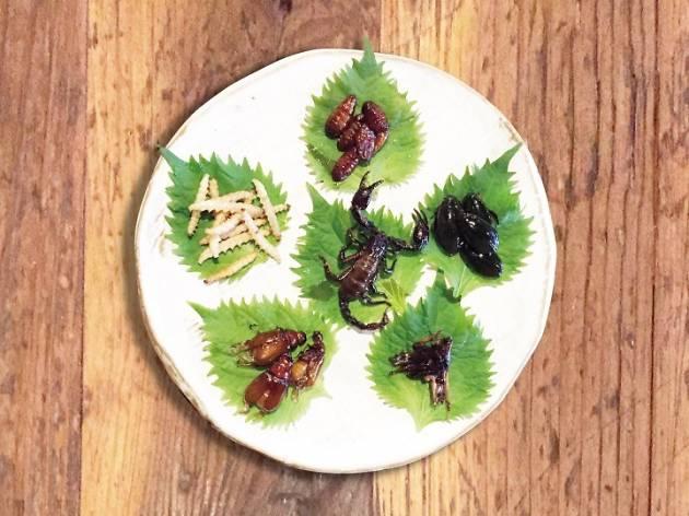 昆虫食フェア