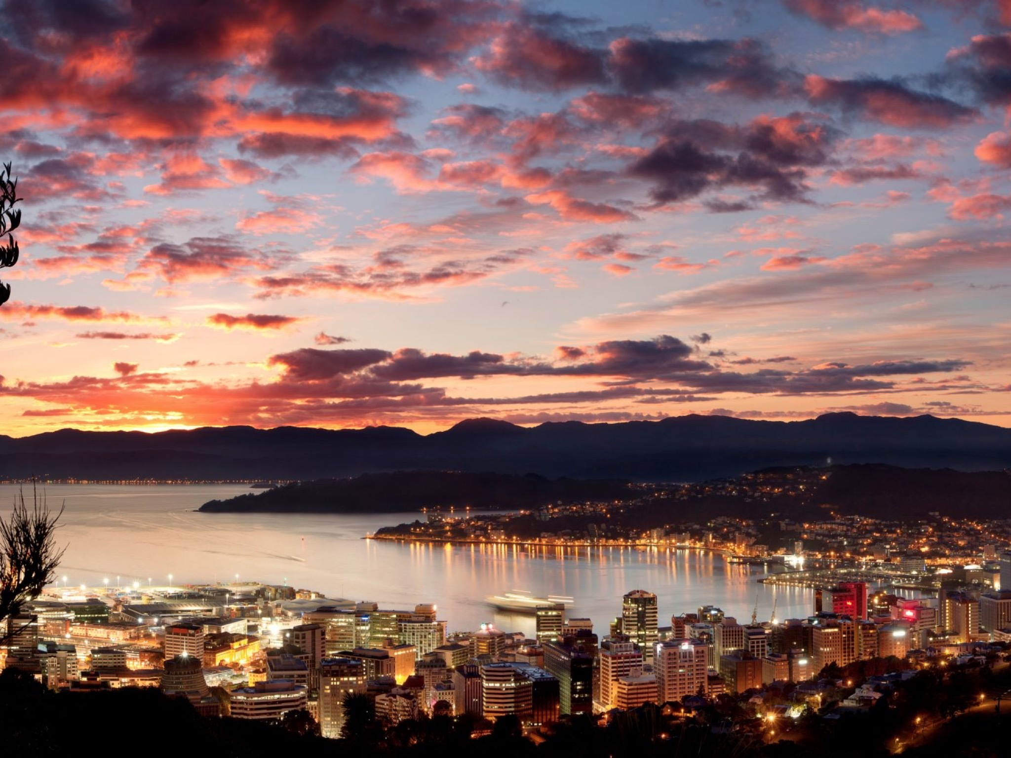 Guide to drinking and dining in Wellington