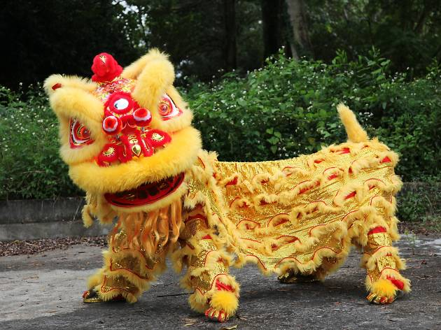 Image result for lion dance