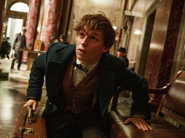 16 blockbuster movies to look forward to in 2016: Fantastic Beasts