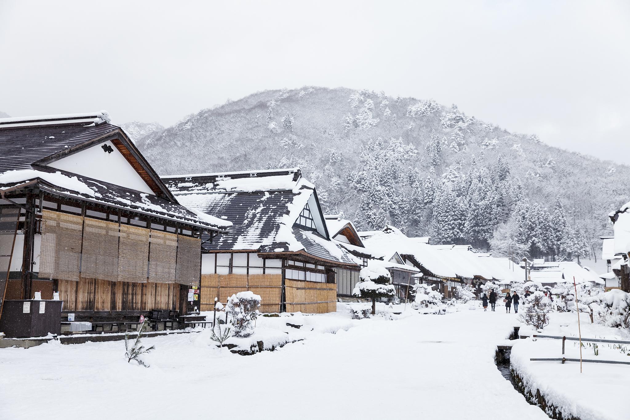 Tonkatsu at Tontei