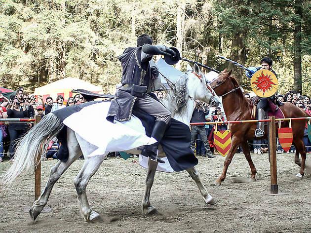 Festival Medieval La Marquesa 2016, un festival que recrea la Edad Media