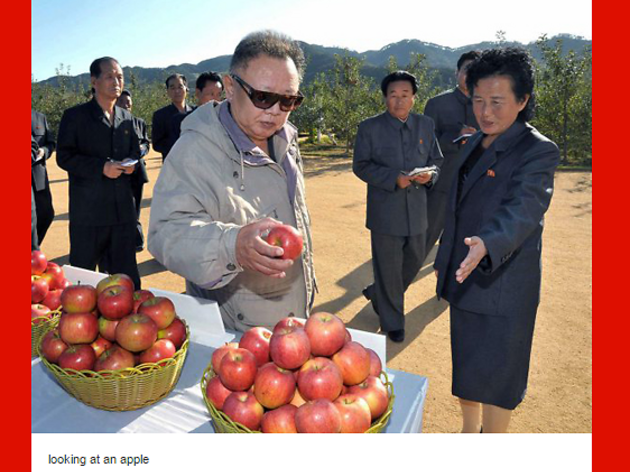 Apparently, we love to look at Kim Jong Il looking at things.
