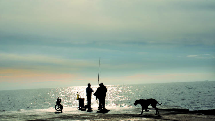 Passejada vora mar
