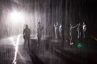 Making friends (and visiting Rain Room after-hours) at LACMA Local