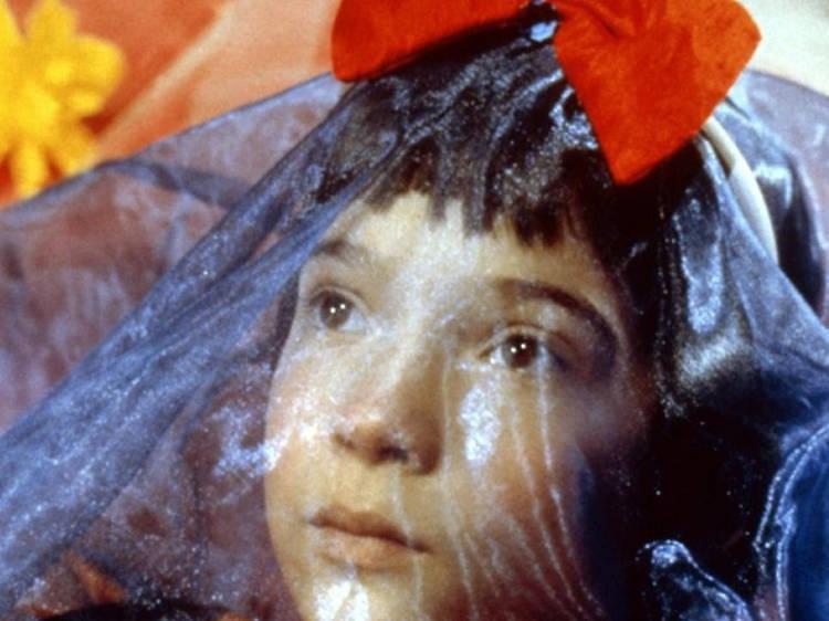 Mi vida en rosa (1997)