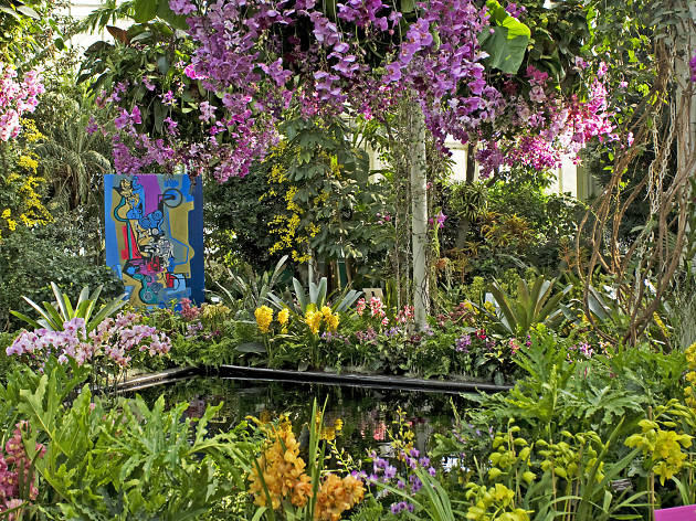 Orchid Show In Nyc Guide With 2020 S Theme And Ticket Info