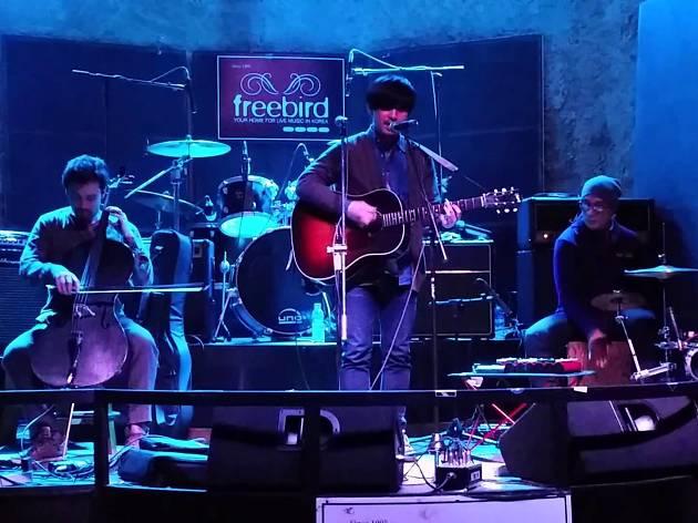 Club Freebird2