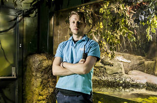 Quit your job, become an... aquarist