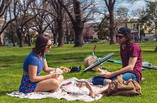 A couple sitting on grass having a picnic