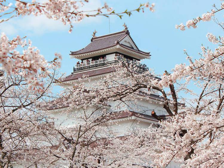 東北探索 第1回『武士の歴史を追って 福島県西部』