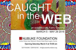 Caught in A web | Exhibition
