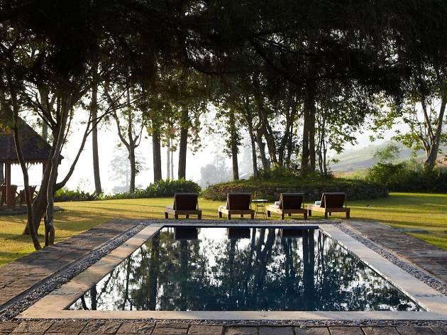 Ceylon Tea Trails Norwood