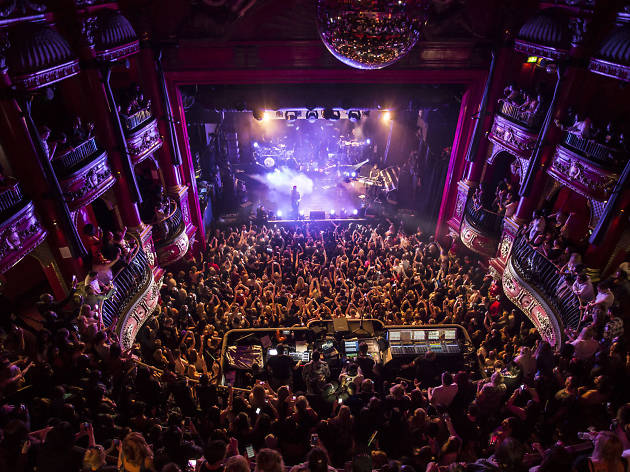 So you've never been to.., Koko