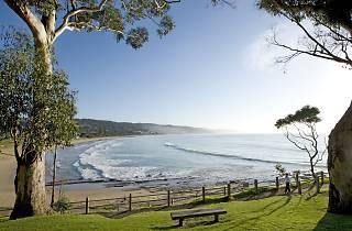 Lorne Beach in Lorne, Victoria