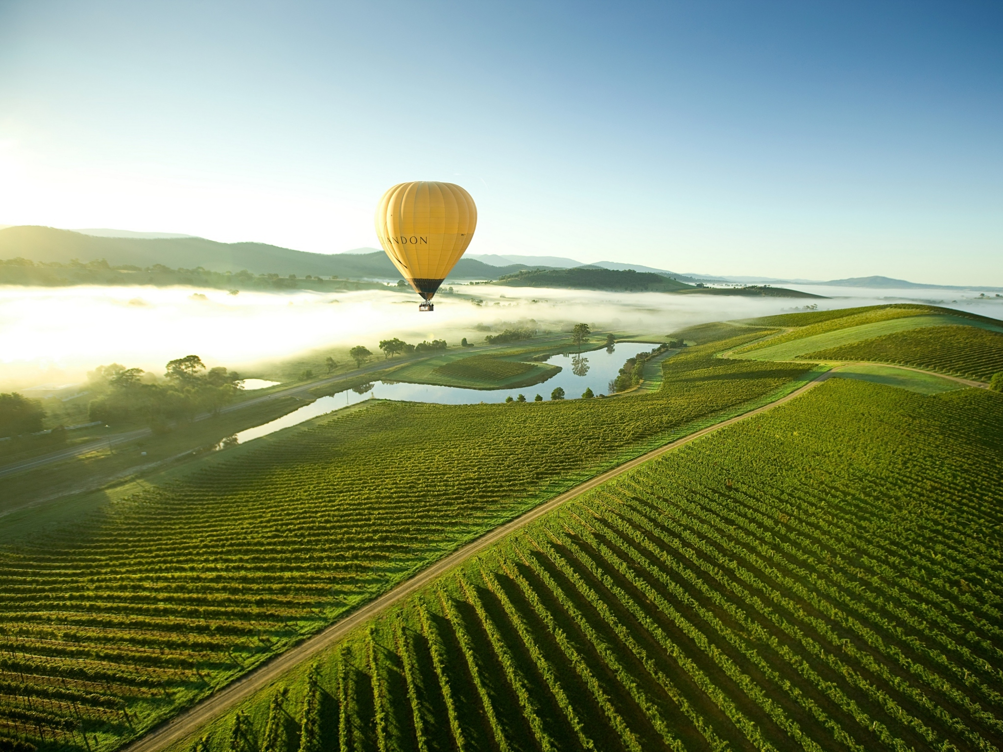 A hot air balloon floats over the Yarra Valley in Victoria
