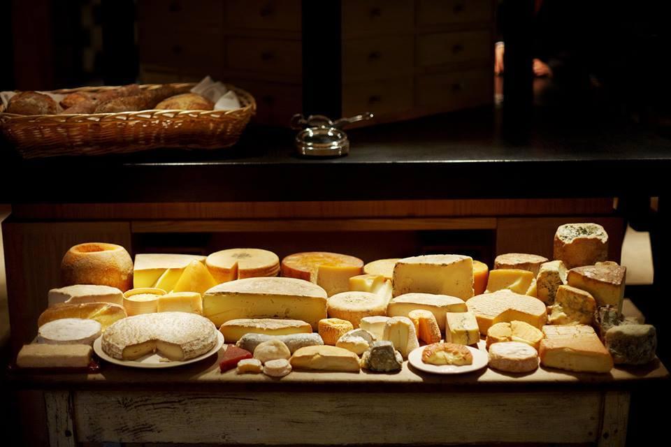 cata de quesos madrid