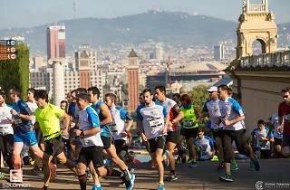 Salomon Run 2016