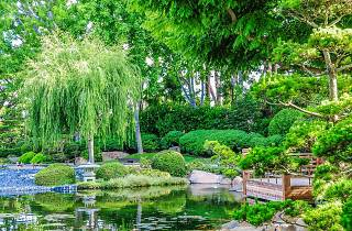 Earl Burns Miller Japanese Garden