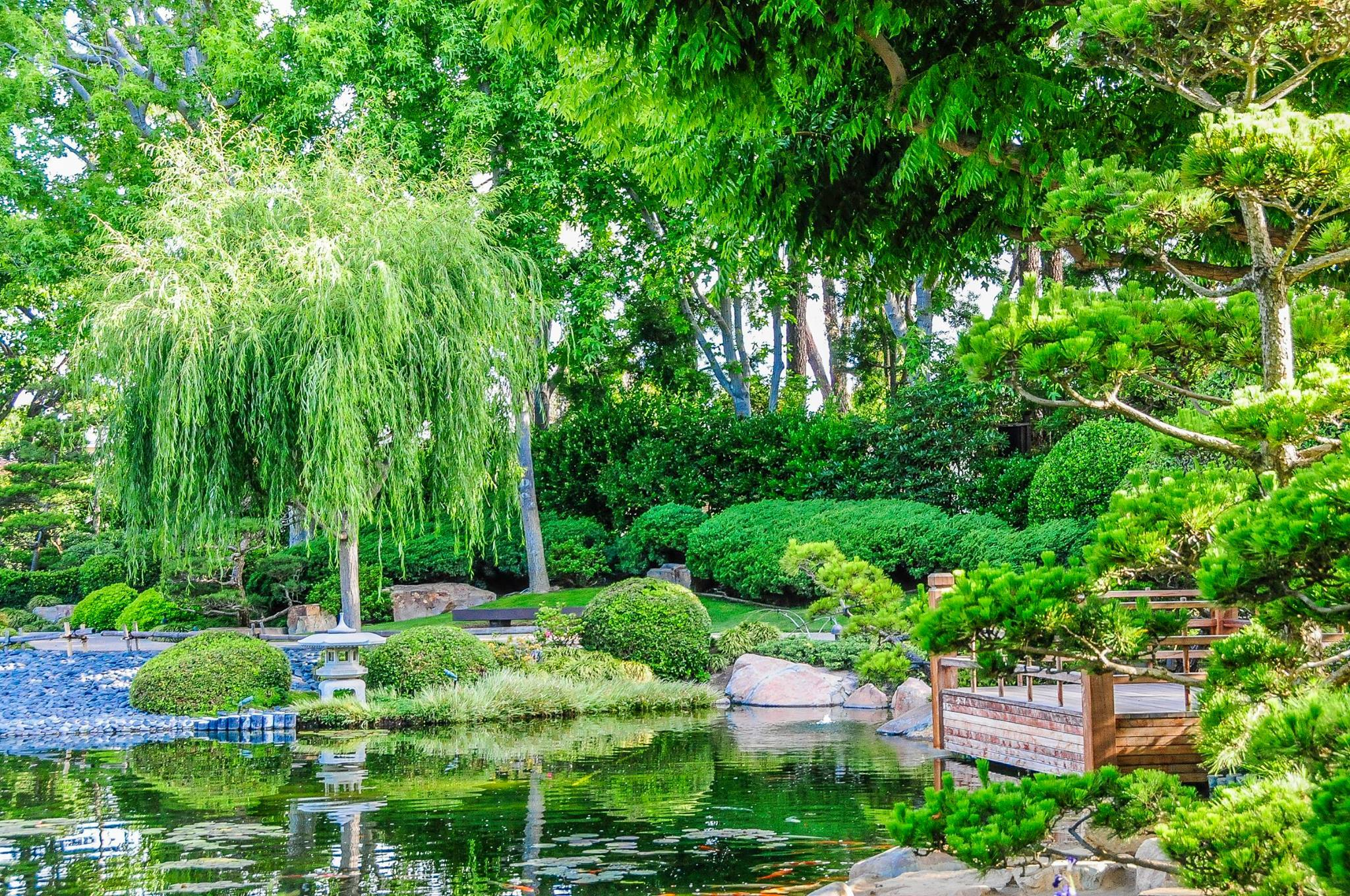 Earl Burns Miller Japanese Garden | Attractions in Long Beach, Long ...