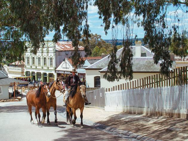 A man leads horses in Ballarat