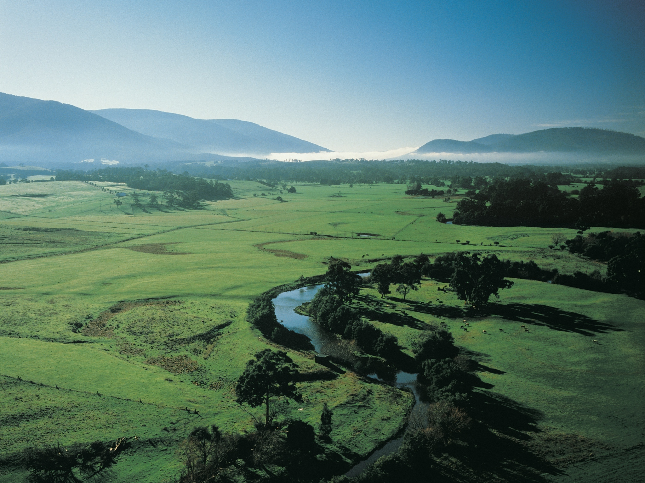 Overlooking Coldstream in the Yarra Valley