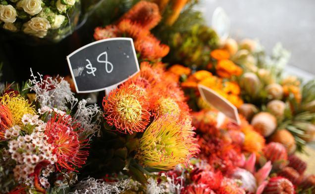 Azalea: South Melbourne Market