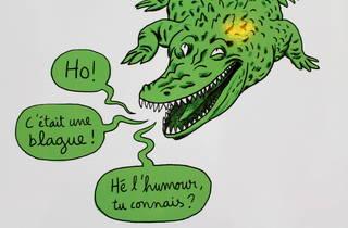projet crocodiles (©Thomas Mathieu/C.Gaillard)