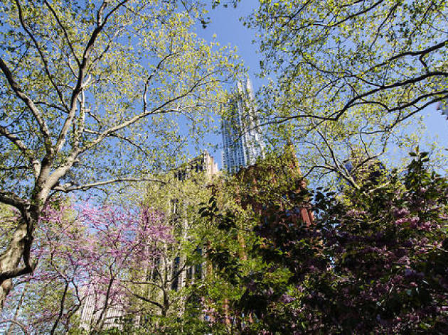 23 signs that it's spring in NYC