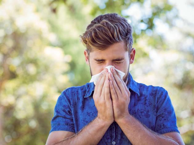 Chuva de pólen em Lisboa: dicas para aliviar as alergias na Primavera