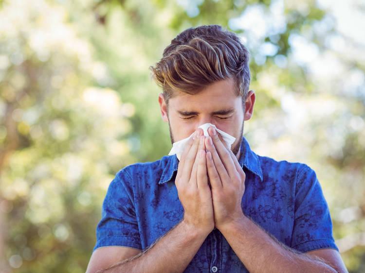 10. Lidar com as alergias