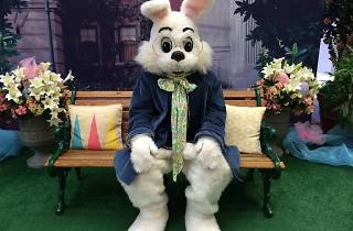 Easter Eggstravaganza at Woodfield Mall