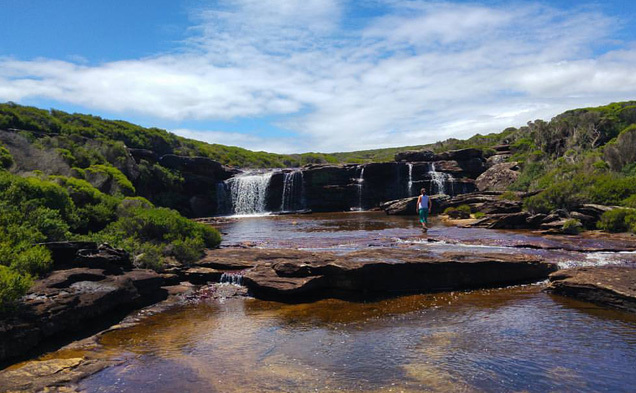 A guide to the Royal National Park