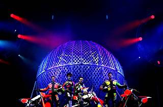 Cirque Adrenaline