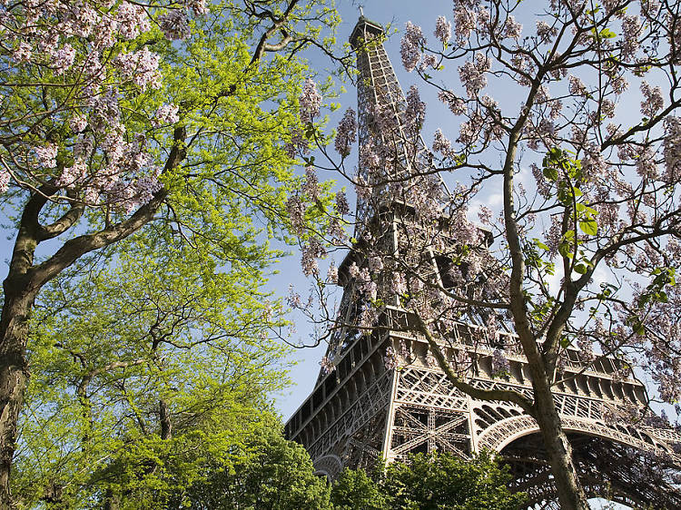 Climb up to the Eiffel Tower's third floor