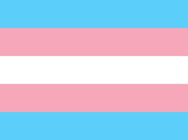 Teoría trans y cambio social