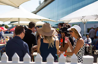 Relaxed Racing Caulfield Blue Diamond Day