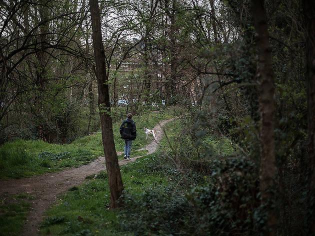 Els llocs més bonics de Girona