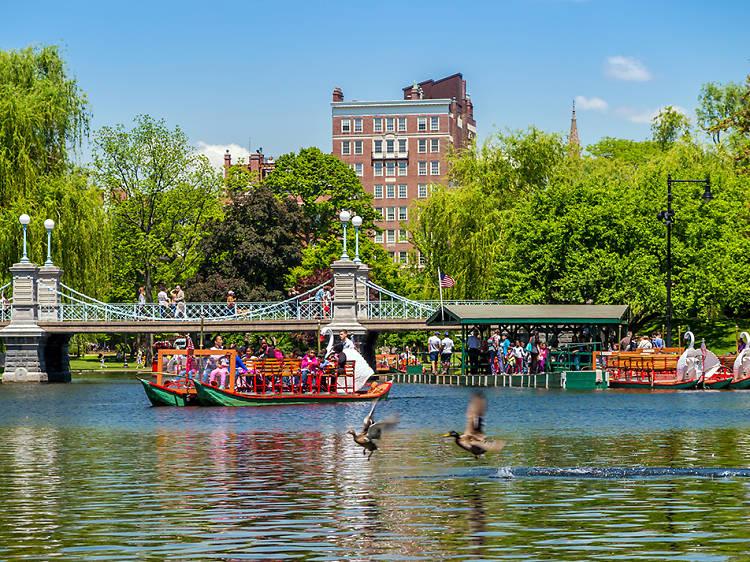 Stroll through the Public Garden and Boston Common