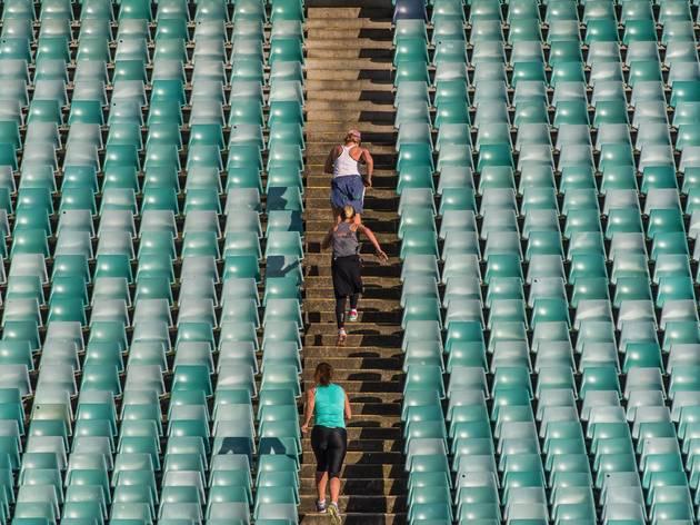Stadium Stomp SCG