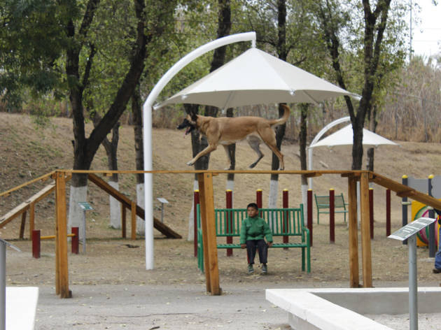 Parque Adolfo López Mateos