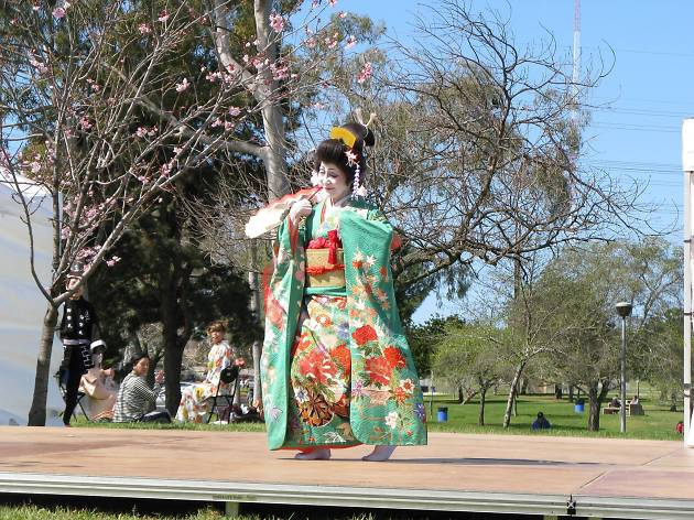 Torrance Cherry Blossom Cultural Festival