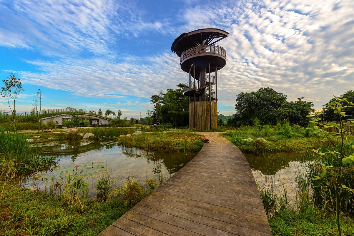 Enjoy panoramic views of the Marshes