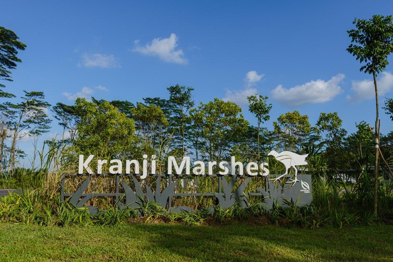 Kranji Marshes