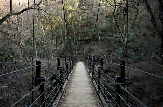 takao bridge