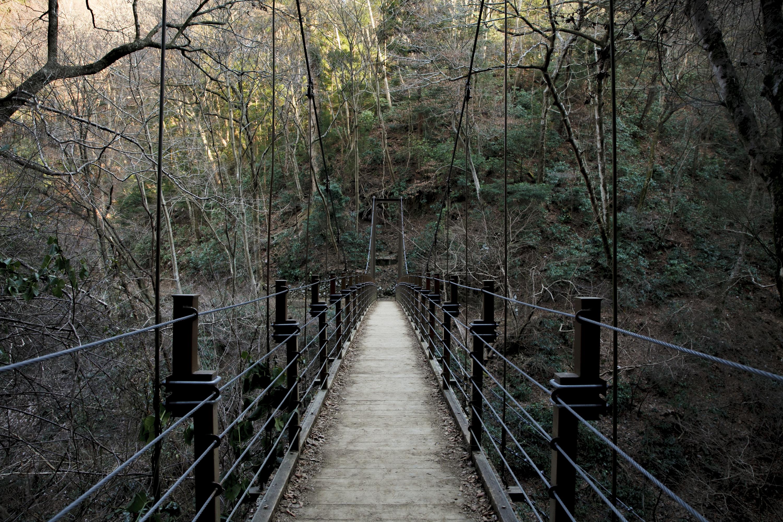 Mountain walk: Mt Takao