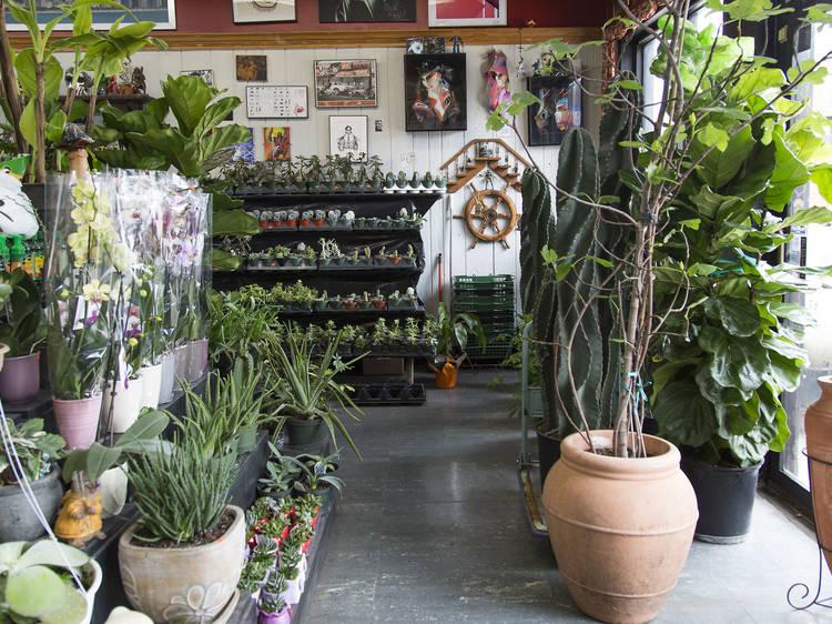 The best shops in Humboldt Park